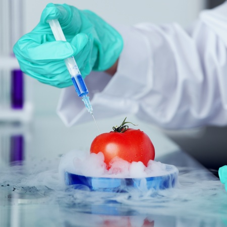 tomato DNA change microbiology experiment  Stock Photo - 9906783