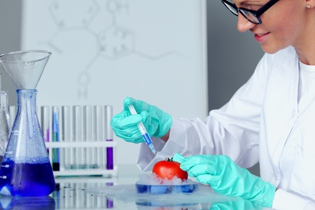 tomato DNA change microbiology experiment  Stock Photo - 9906819