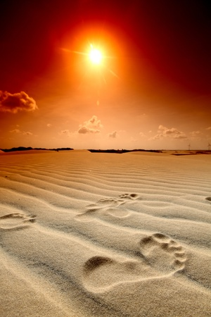 footprint on desert sand photo