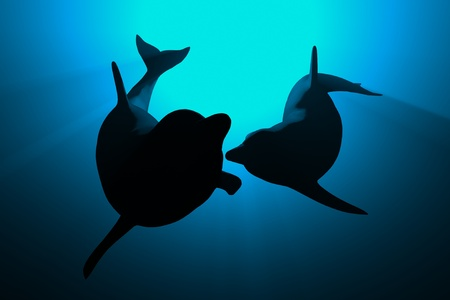 3d dolphins in blue light love concept photo