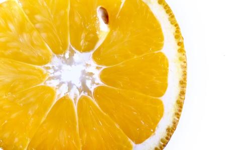 orange slice macro close up photo
