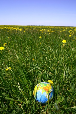 pollution free: globe of planet earth in green grass