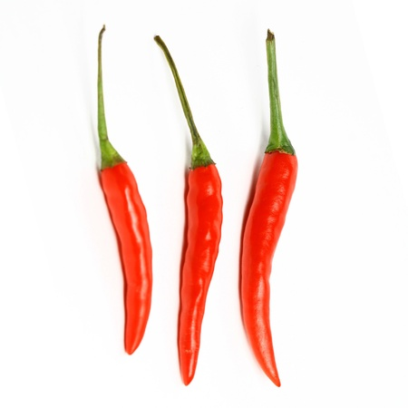 red jalapeno: red hot chili pepper isolated on white