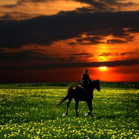 girth: horse rider in green dandelion field