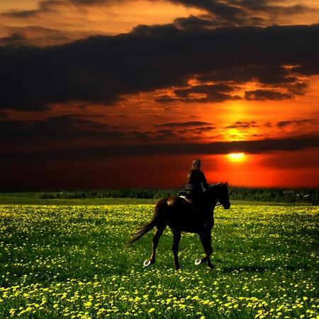 uomo a cavallo: pilota a cavallo in campo verde di tarassaco