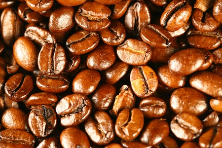 coffee beans aroma food background photo