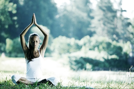 yoga woman on green grass in lotus pose Stock Photo - 10547886
