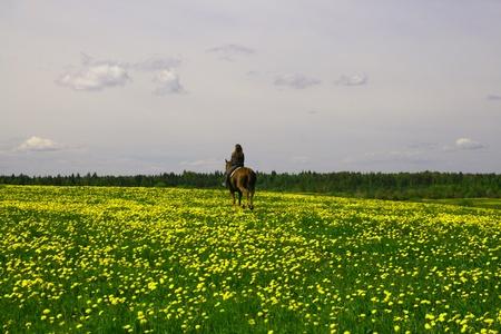 racehorses: horse rider in green dandelion field