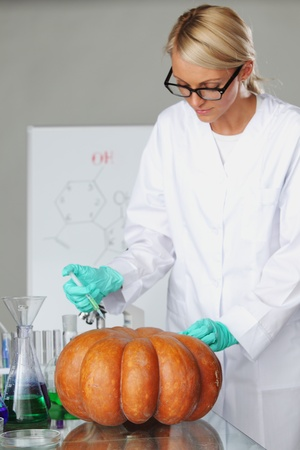 Scientist conducting genetic experiment with pumpkin photo