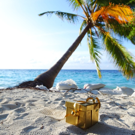 golden gift on ocean beach under palm Stock Photo - 10896038
