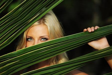sensuel: visage de femme et le fond de palmiers