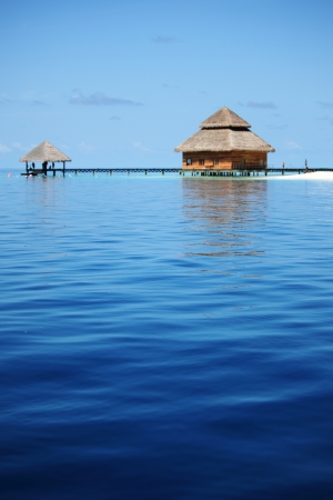 resort maldivian houses in blue sea