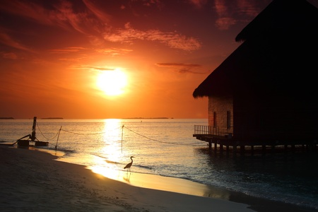 resort maldivian houses on sunrise photo