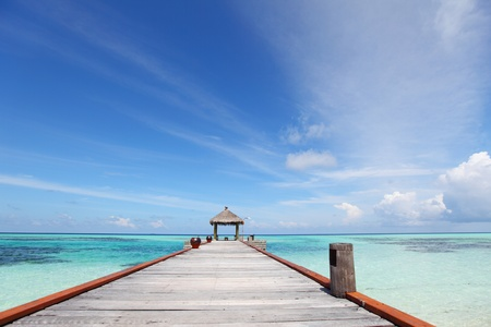 bungalows: resort maldivian houses in blue sea