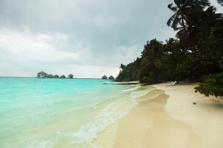 storm on tropical island palm sea and sky Stock Photo - 10895952