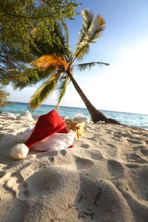 santa hat on sand under palm photo