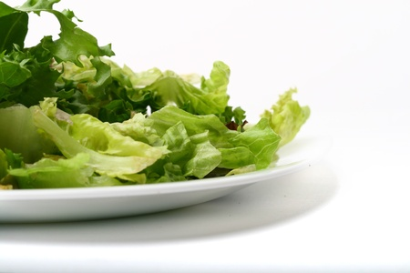 salad isolated on white background photo