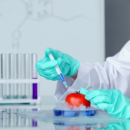tomato DNA change microbiology experiment Stock Photo - 11278612
