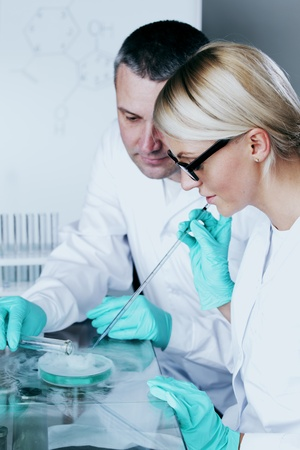 two scientist in chemical lab conducting experiments Stock Photo - 11340358