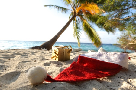 santa hat on sand under palm photo