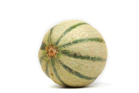 cantaloupe melone isolated on white Stock Photo - 12507032