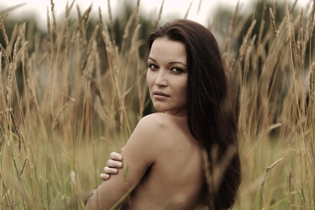 nude woman in the rye Stock Photo - 12508548