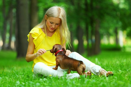 short hair dog: woman dachshund in her arms on grass Stock Photo