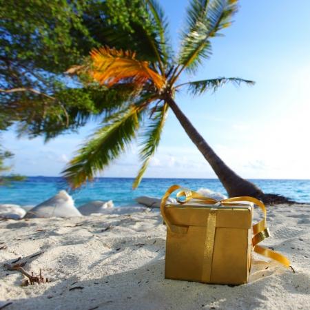 golden gift on ocean beach under palm Stock Photo