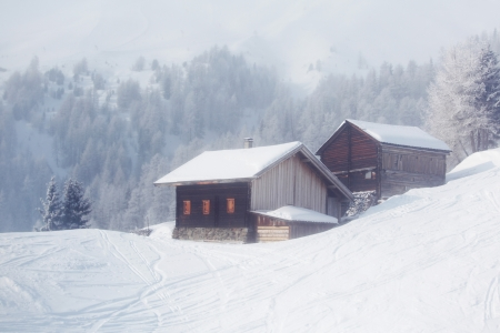 warm house: house in winter forest Stock Photo