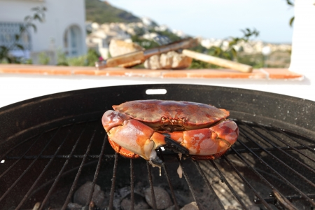 crab on charcoal grill photo