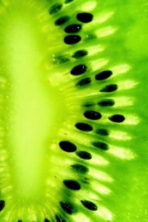 bondad: rebanada de kiwi verde