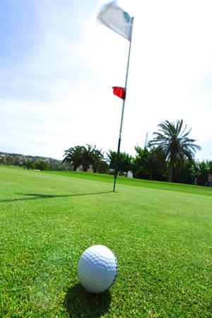 golfcourse: golf-ball on course Stock Photo