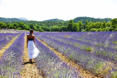 lavender field: Woman standing on a lavender field Stock Photo