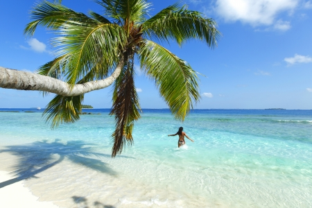caribbean: Woman splashing in sea near beautiful beach with palm