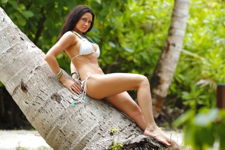 Beautiful sexy woman in bikini sitting on palm photo