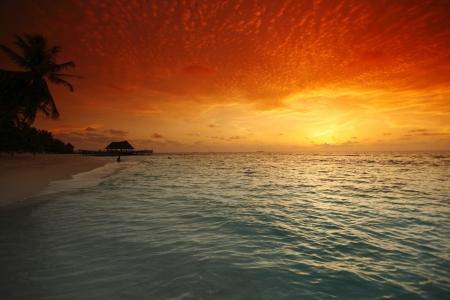 Mooi uitzicht op zee en leeg strand met palmen op zonsondergang