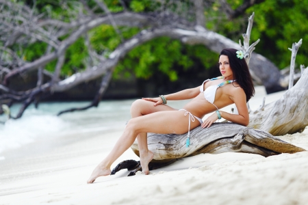 Beautiful woman on tropical beach posing on dry tree photo