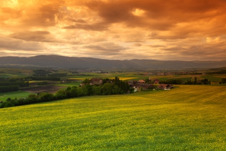 grassy field: Green meadow under sunset sky with clouds