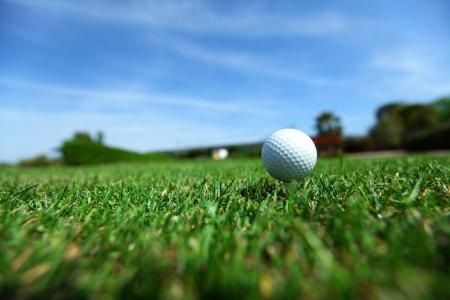 golf drapeau: balle de golf sur le parcours Banque d'images