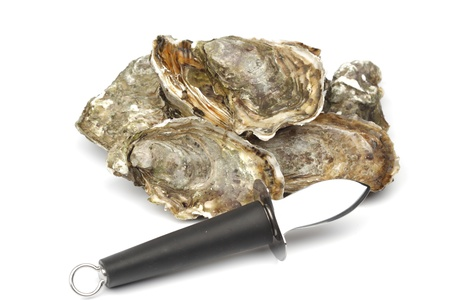 Oysters and knife isolated on white background photo