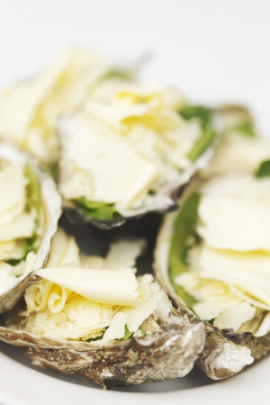 Oysters with cheese and basil isolated on white photo