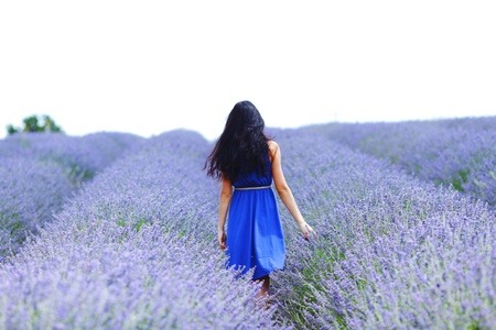 field sunset: Woman standing on a lavender field Stock Photo