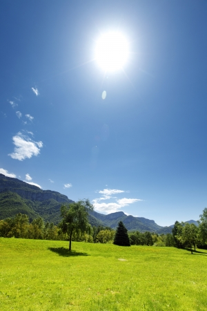 a beautiful view of the alps tree on grass field Stock Photo