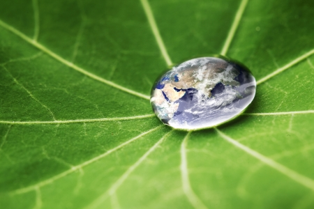 The world in a drop of water on a leaf  Elements of this image furnished by NASA photo