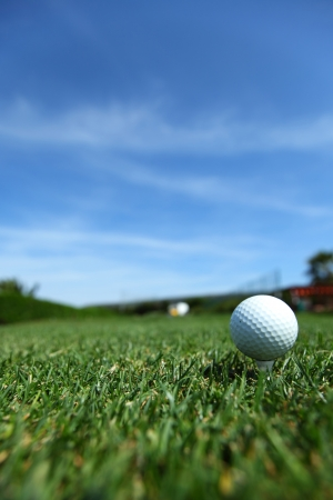 golf-ball on course photo