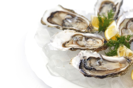 Oysters with lemon and dill on plate with ice 版權商用圖片
