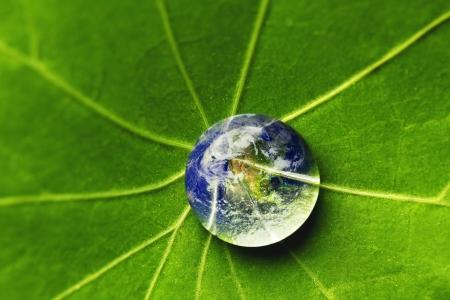 De wereld in een druppel water op een blad Elementen van deze afbeelding geleverd door NASA