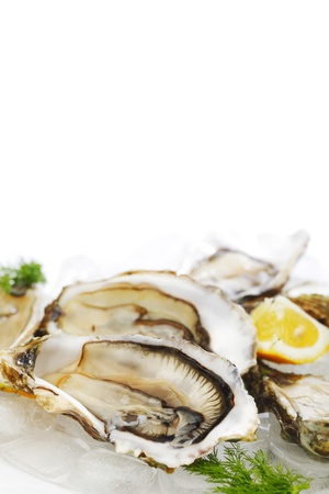 Oysters with lemon and dill on plate with ice Stock Photo