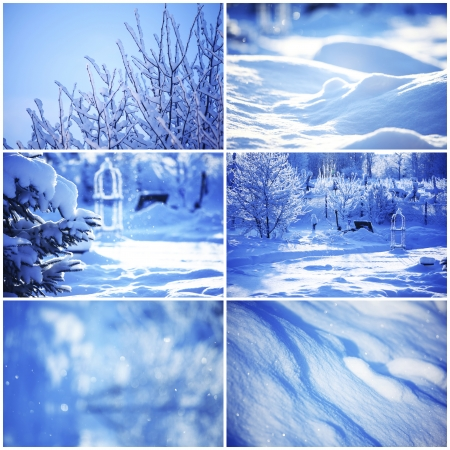 collage of winter cards photo