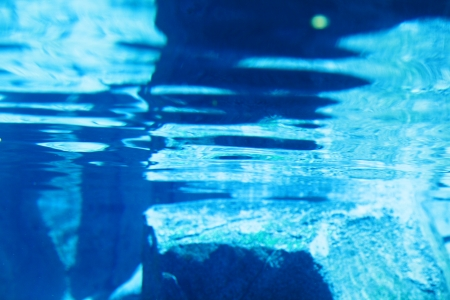 waters: Abstract water surface with blue reflection